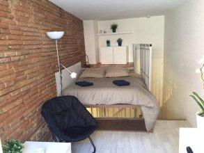 Le Petit Moulin, Duplex Hypercentre Toulouse