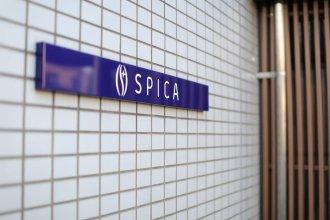 Hostel Spica