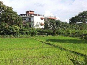 Manikgoda Tea Paradise