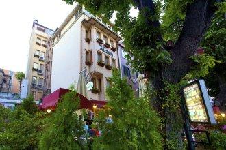 Отель Alzer