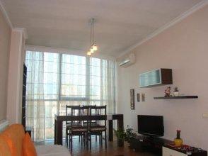 Central Comfy Apartment