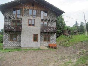 Guest House Stari Druzy