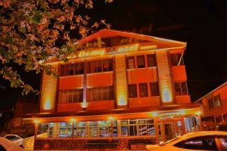 Danis Motel