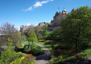 Wallace's Arthouse Scotland