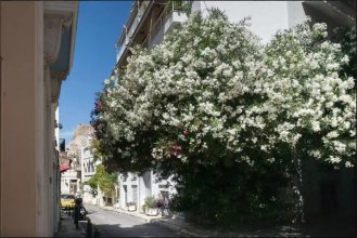 Under the Acropolis, In the Heart of Plaka