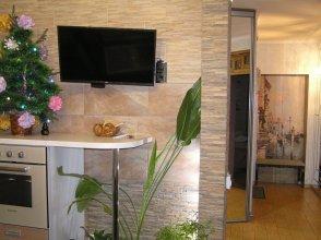 Apartment on Radischeva 23 apt 20