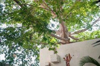 Casa La Ceiba
