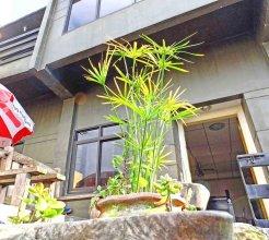 Baguio Traveller's House