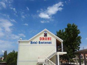 Hotel Droni