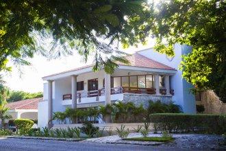 Homing Bird Casa Matuk