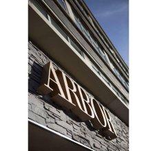 Отель Arbor City