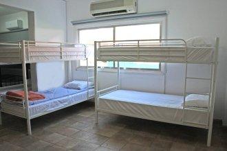 C.A.T Hostel Paphos-Adult only