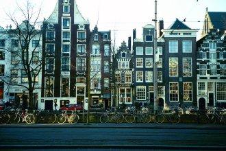 Mr. Monkey Amsterdam