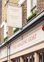 The Grazing Goat