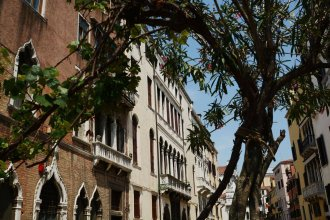 Ve.N.I.Ce Cera Palazzo Grimani