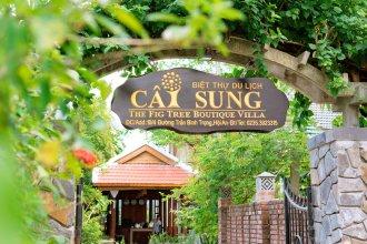 Fig Tree Boutique Villa