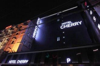 Cherry Hotel Jamsil