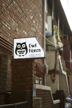 Owl Guesthouse - Hostel