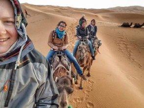 Moda Camp Merzouga Camel Quad Sunboarding ATV