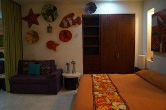 Romantic Zone V399 Studio