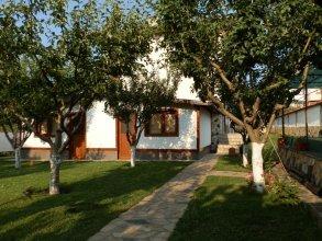 Medi Guest House