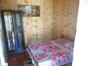 Guest House on Demerdzhipa 57