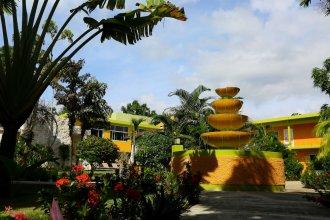 The Oasis Resort