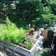 Des Jardins