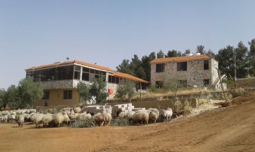 Town of Nebo Hotel