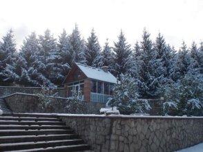 House Sokol