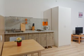 Apartments ALLiS-HALL on Stepana Razina 2