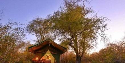 Tuskers Wilderness Camp