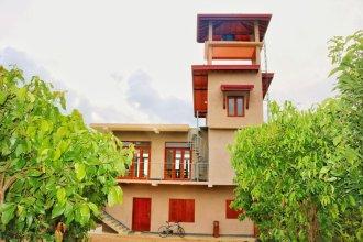 Bobos Cinnamon Estate  Sri Lanka