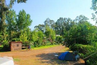Medusa Bar & Camping