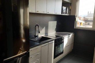Stylish Apartment in Dorcol