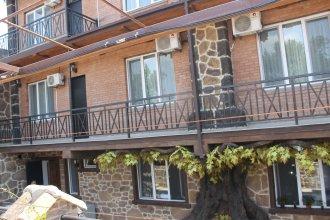 Hotel Gremi