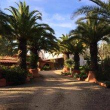 Casa Do Palmeiral