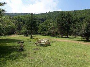 Kirkahvesi Garden - Campsite