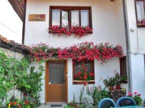 Guest House Terziiski