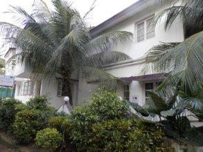Sugarplum Macedo Palms