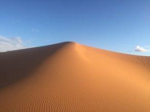 Sahara Sabaku Tour Camp