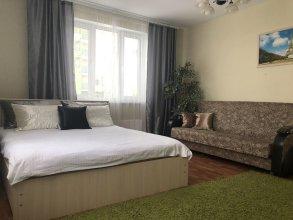 Apartments on Karla Marksa 48