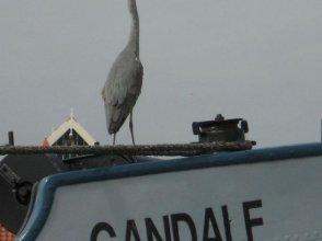 Hotelschip Gandalf