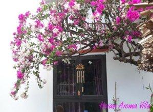 Hoian Aroma Villa