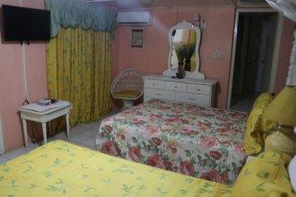 Hibiscus Hostel