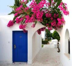 Aliathon Aegean Village
