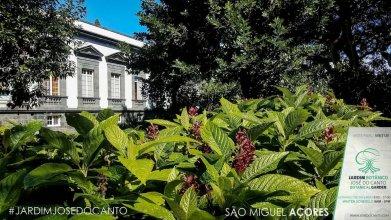 Casa Do Jardim