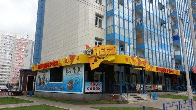 Апартаменты на Карамзина