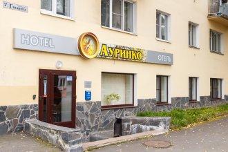 Гостиница Ауринко