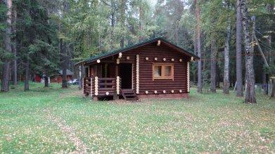Гостевой дом Тихий лес